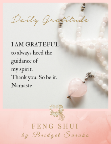 Daily Gratitude Volume 2 by Bridget Saraka (3)